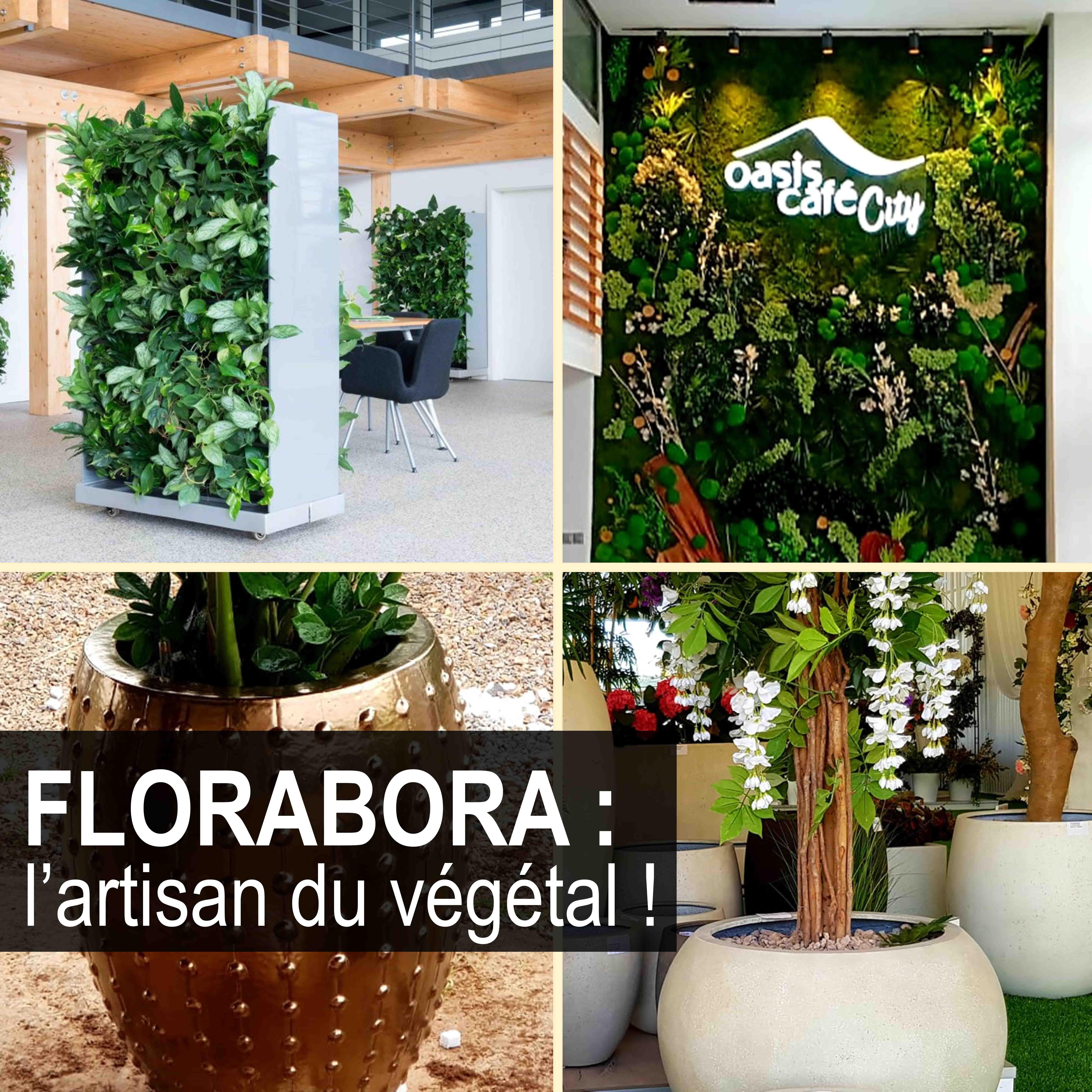 featured image florabora mur vegetal pepiniere mabani.info mabani.ma