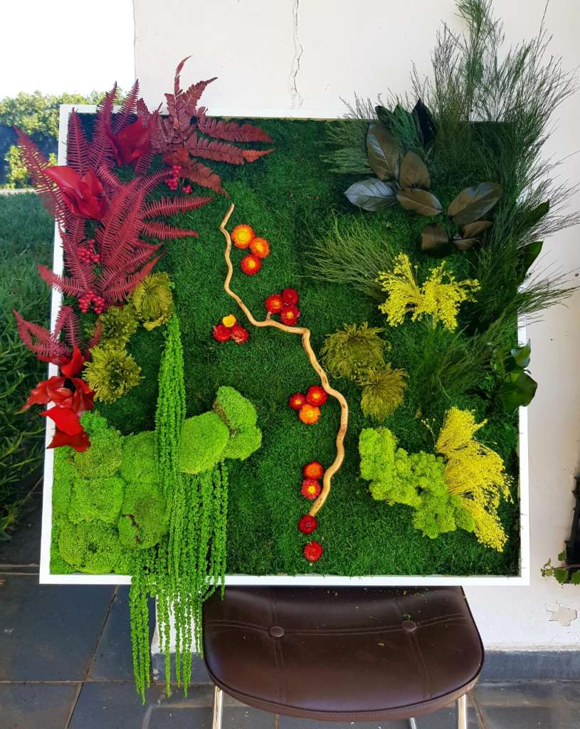 florabora mur vegetal pepiniere mabani.info mabani.ma